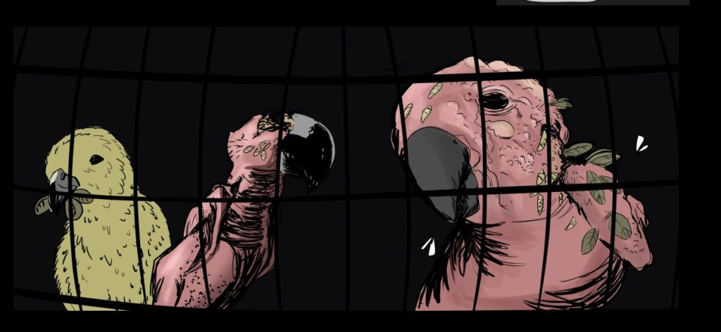 horror comic_parrots no feathers