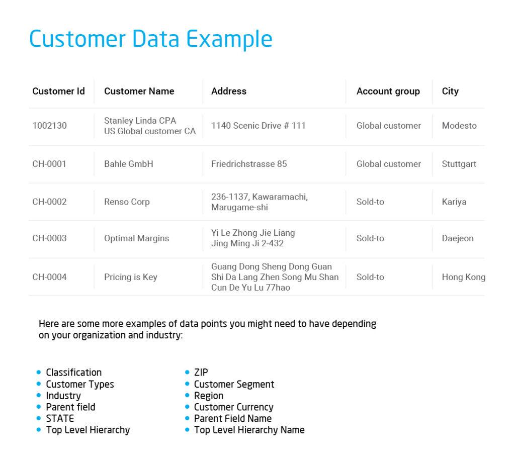 Customer_Master_Data_Example